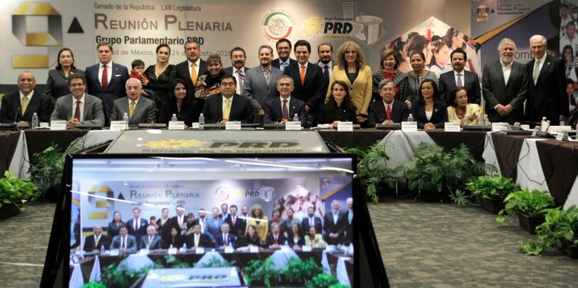 Dirigentes y Senadores del PRD